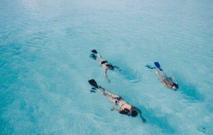 dykning i sommervarmen