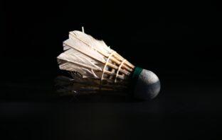 badminton shop online